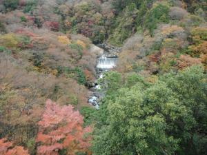 2011.11.28.01miyanoshita.jpg